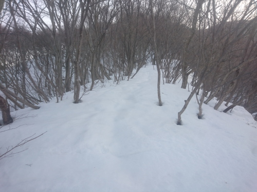 米山1.jpg