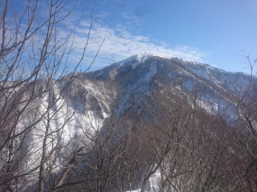 米山11.jpg