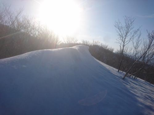 米山2.jpg