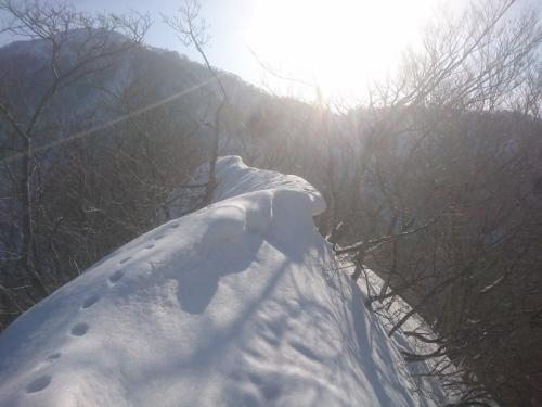 米山4.jpg