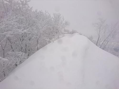 米山5.jpg