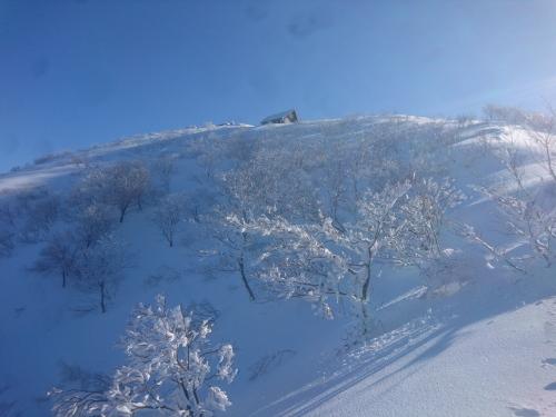 米山7.jpg
