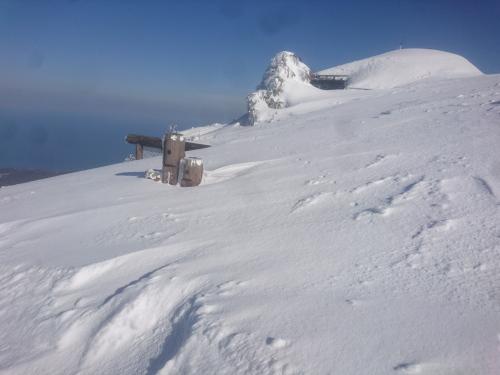 米山9.jpg